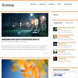 Wordpress groovy Website News Magazine Theme Business free Hosting