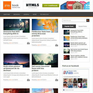 Wordpress playbook Website News Magazine Theme Business free Hosting