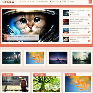 Wordpress repose Website Ecommerce Magazine Theme For Sale free Hosting