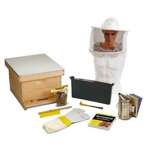 Bee hive kit information on purchasing new and used business industrial equipment online - Beekeeping beginners small business ...