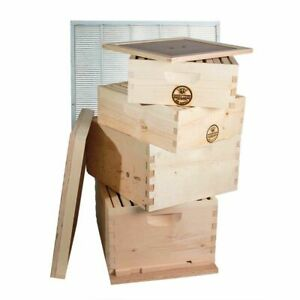 Double Deep Brood Box Double Super Box 4 Tier Beginners Beehive Kit Gl4stack