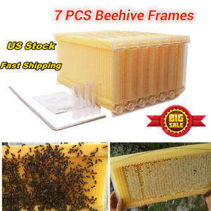 7pcs New generation Auto Honey Hive Bee Beekeeping Hives Frames Harvesting Usa