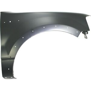 Fender For 2004 2006 Ford F 150 Front Right Side Primed Steel With Molding Holes