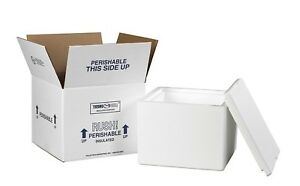 Styrofoam Insulated Foam Container Thermo Mailer Shipping Box 9 5 X 9 5 X 7
