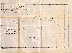 1906 Antique Map Poster Hawaiian Island Coastal Plantations Survey Maui County 5