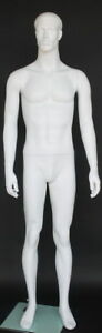 New 5 Ft 11 In Small Size Male Fullsize Mannequin Matte White Finish Sfm72 wt