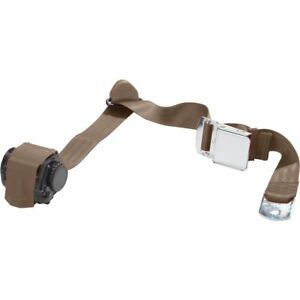 Beams Wsch300 dk Brown Universal Seat Belt