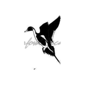 Pintail Drake Decal Duck Hunting Decal 5035