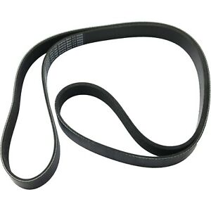 Serpentine Belt For 2003 2011 Honda Element 0 17 In Thickness