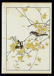 1892 Orig Japanese Woodblock Print Imao Keinen Bird Flower Long Tail Tit