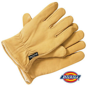 Dickies Gloves Lined Leather Thermal Work Ppe Outdoor Durable Protection Gl0200