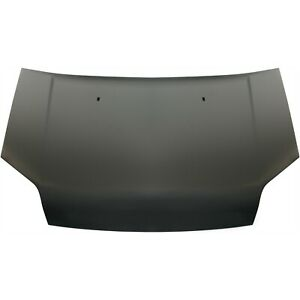 Hood For 2010 2013 Ford Transit Connect Primed Steel Capa
