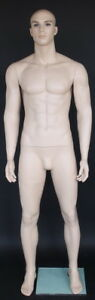 6 3 Tall Male Muscular Body Fullsize Mannequin Skintone Makeup M796ft 40 31 40