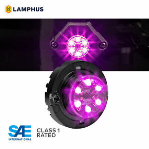 Lamphus Snakeeye Iii Led Hideaway Strobe Light Sae Class1 Ip67 Purple