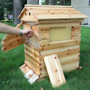 Auto Flow Beehive 7pcs Flow Frame Free Flow Hive With Automatic Frames Usa Stock