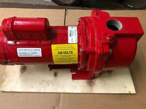 Red Lion 63 Gpm 1 Hp Self priming Cast Iron Sprinkler Pump