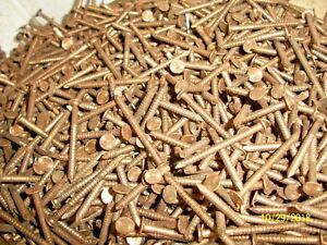 100 Old Brass Bronze 1 1 2 Long Ring Nails Boat Woodworking Crafts Art Work