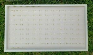 White Stackable Trays With White off White 96 Ring Inserts
