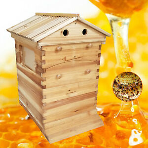 New Bee Hive House Auto Honey Frames Beehive Beekeeping Brood Wooden Box Kit Us