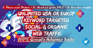 5000 American Or Worldwide Social Medea Web Traffic Within 10 Days