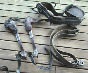 Vintage Lineman Pole Climbing Grar Belt Spikes Strap Tree Logging