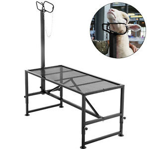 Livestock Stand Trimming Stand 51x23 Inch Livestock Trimming Platform For Goat