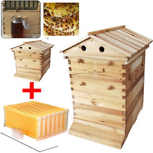 7 Pcs Auto Honey Hive Beehive Frames Beekeeping Wooden House Beehive Boxes Us
