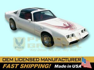 1981 Pontiac Firebird Turbo Trans Am Decals Stripes Kit