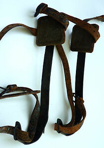 Antique Vtg Steel Tree Pole Climbing Spikes Spurs Gaffs Hooks Free Shipping
