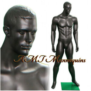 Male Display Muscular Mannequin Black chacoal Gray full Body Manikin ma12 1