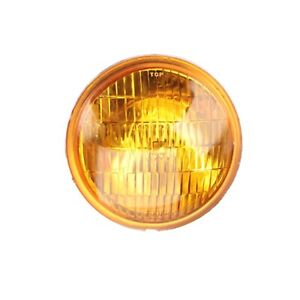 Replacement 12 Volt Vintage Style Fog Light Bulb Amber Lens
