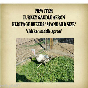 6 turkey Or Chicken Saddle Apron Hatching Eggs Back Protection Poultry