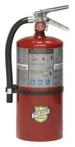 Buckeye 11310 Fire Extinguisher 4a 60b c Dry Chemical 10 Lb 17 h