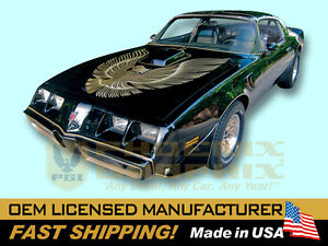 1981 Pontiac Firebird Trans Am T a Special Edition Bandit Decal Stripe Bird Kit