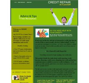 credit Loan Niche Turnkey Website Business For Sale