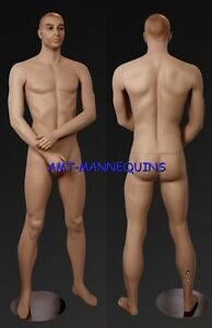Male Manequin Displays Military Uniforms Mens Jeans Dress Big Manikin Bill 0