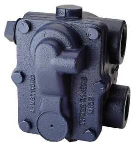 Steam Trap 175 Psi 377f 7 7 16 In L Armstrong International 175a6