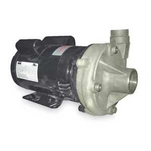 Dayton 2zxk6 Stainless Steel 3 4 Hp Centrifugal Pump 115 230v