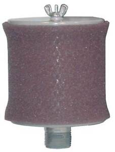 Inlet Filter 1 1 4 Mnpt Out 70 Max Cfm Solberg Ft 19p 125