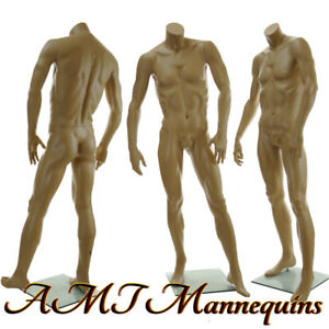 5 8 Male Headless Mannequin Muscular Manikin Headless Skin Tone David X x