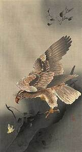 Hawk Hunting 22x30 Japanese Art Print By Koson