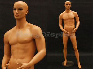 Tan Skin Young Male Mannequin Dress Form Display md ham24