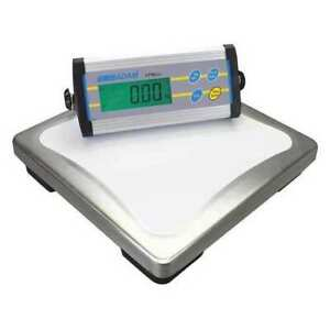 Adam Equipment Cpwplus200 Digital Platform Bench Scale With Remote Indicator