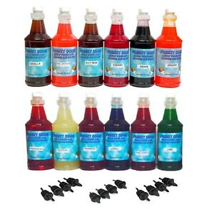 Freezy Cone 12 Quart Bottles Assorted Flavor Snow Cone Shaved Ice Syrup