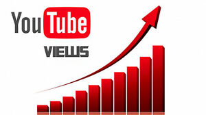 Youtube Service Grow Your Channel Fast Delivery