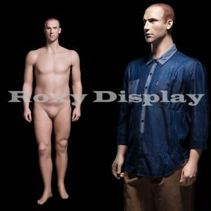 Male Fiberglass Realistic Mannequin Dress Form Display mz plusman2