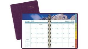 At a glance G70359 Dayminder Scenic With Monthly Planner Purple