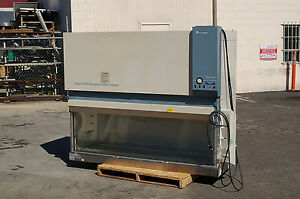 Forma 1186 Classii A b3 Biological Safety Scientific Hood Laboratory Thermo Fume