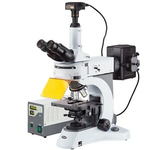 Amscope 40x 1000x Upright Fluorescence Microscope With Rotating Filter Turret