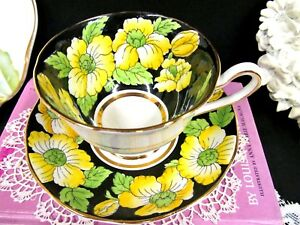 Salisbury Tea Cup And Saucer Floral Painted Blossom Black Yellow Teacup